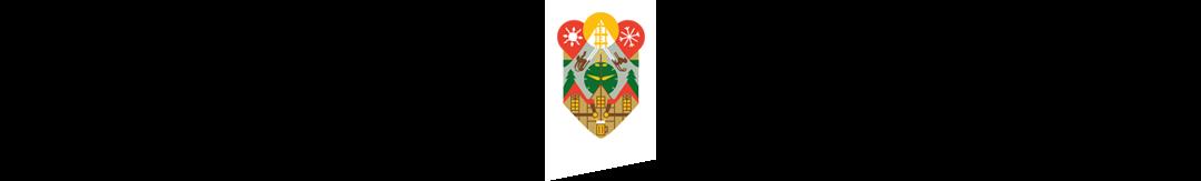 footer-ss-logo